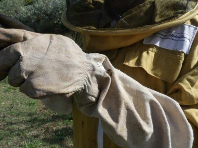 gant d'apiculteur